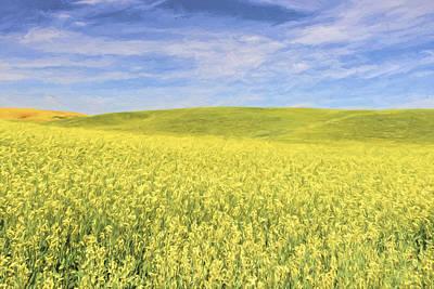 Acreage Of Yellow II Poster