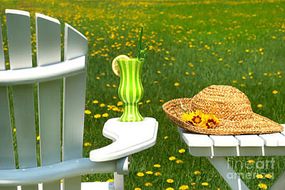 Adirondack Chair On The Grass  Poster by Sandra Cunningham
