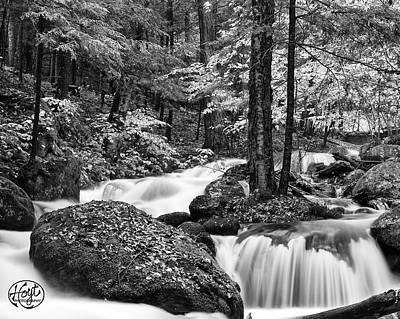Adirondack Stream Poster