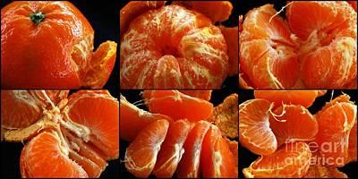 Adventures With A Mandarin Orange Poster by Nancy Mueller