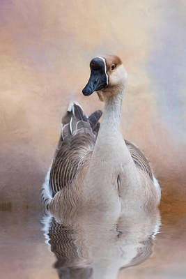 Poster featuring the photograph African Goose by Robin-Lee Vieira