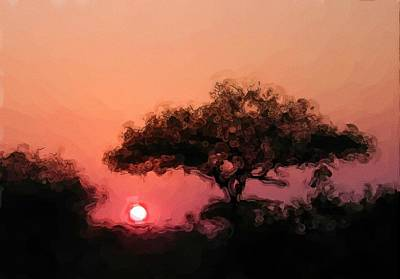 African Sunset Poster by David Lane