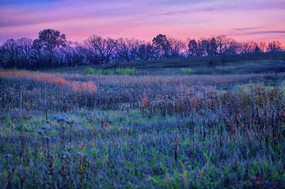 After Sunset - Blue Hour At Retzer Nature Center Poster by Jennifer Rondinelli Reilly - Fine Art Photography