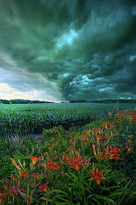 After Thought Poster by Phil Koch