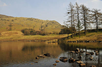 Afternoon At Blea Tarn Poster by Nichola Denny