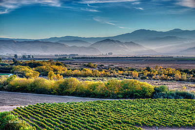 Afternoon Light In The Salinas Valley Poster