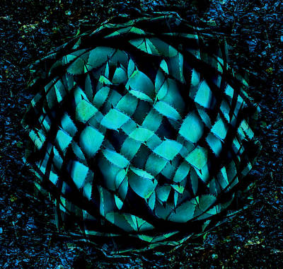 Agave Blues Abstract Poster