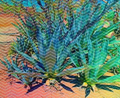 Poster featuring the mixed media Agave by Michelle Dallocchio
