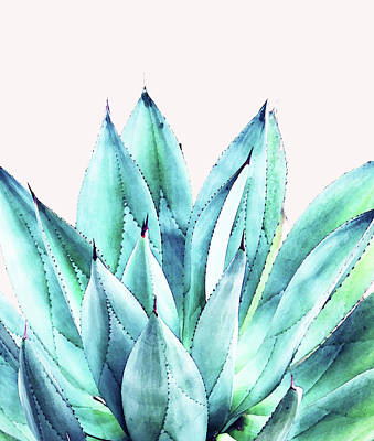 Agave Vibe Poster