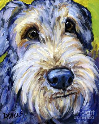 Airedale Terrier Cutie Portrait Poster