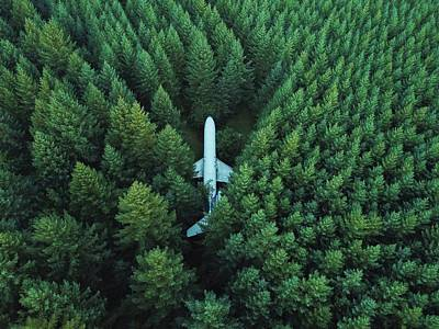 Airplane In Forest Poster