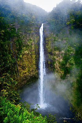 Akaka Falls Poster by Christopher Holmes