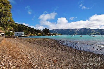 Akaroa Harbour Boatshed Poster by John Buxton