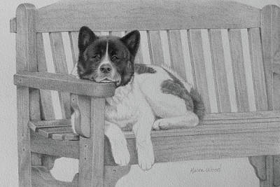 Akita On The Bench Poster