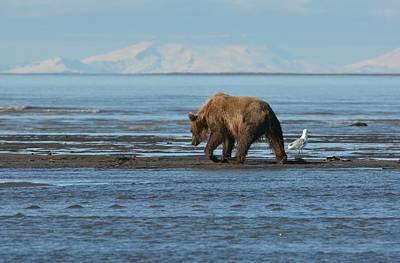 Alaskan Splendor Poster