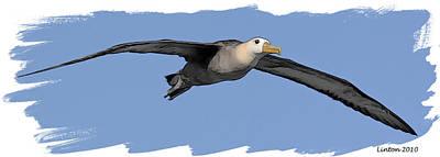 Albatross Poster by Larry Linton