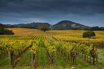 Alexander Valley Poster by RMB Images / Photography by Robert Bowman