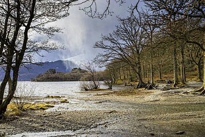 Poster featuring the photograph All Seasons At Loch Lomond by Jeremy Lavender Photography