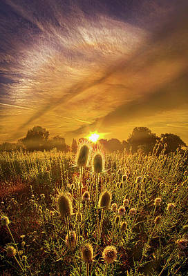 Almost Seemed An Eternity Poster by Phil Koch