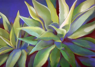 Aloe Plants In Big Sur Poster