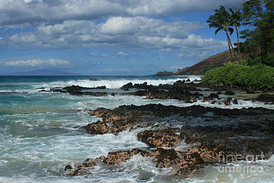 Aloha Island Dreams Paako Beach Makena Secret Cove Hawaii Poster