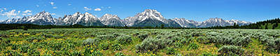 Alpine Meadow Teton Panorama Poster by Greg Norrell