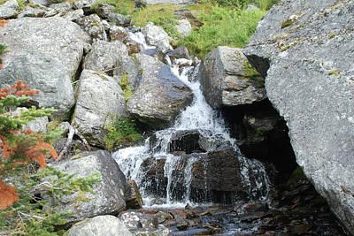 Alpine Waterworks Poster