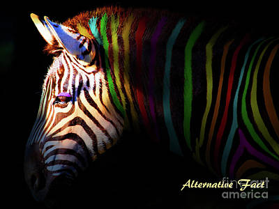 Poster featuring the photograph Alternative Fact Number 1 The Color Striped Zebra 7d8908 by Wingsdomain Art and Photography