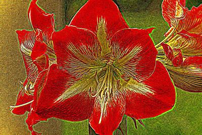Amaryllis Art Series Poster by Geraldine Scull