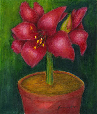 Poster featuring the painting Amaryllis by Jeanne Kay Juhos