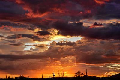 Amazing Arizona  Poster by Saija Lehtonen
