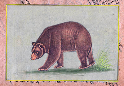 American Black Bear India Vintage Miniature Painting Watercolor Artwork Poster by B K Mitra