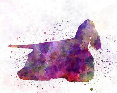 American Cocker Spaniel 01 In Watercolor Poster