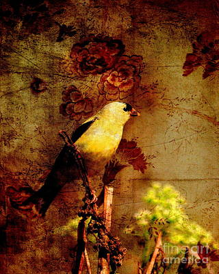 American Goldfinch Perched . Photoart Poster by Wingsdomain Art and Photography