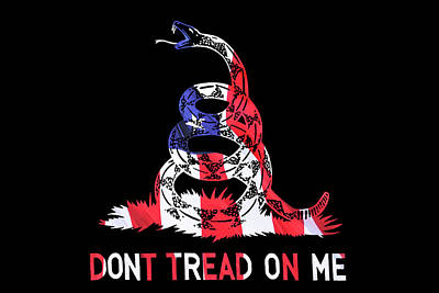 American Pride Don't Tread On Me Horizontal Poster