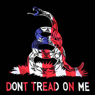 American Pride Don't Tread On Me Square Poster