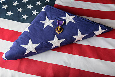 American Purple Heart Hero Poster by James BO Insogna