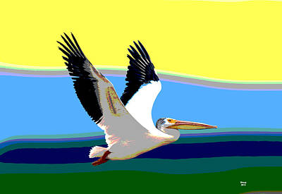 American White Pelican Poster by Charles Shoup