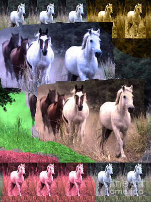 American Wild Horse Mustang On Posters Canvas Pillows Curtains Duvetcovers Phone Cases Tshirts Jerse Poster