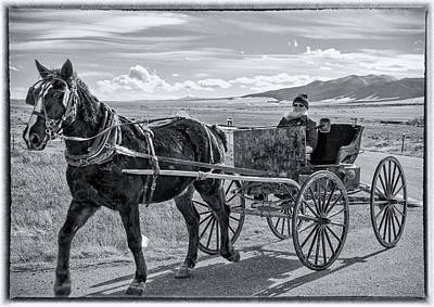 Amish Buggy Driver Poster by John Bartelt
