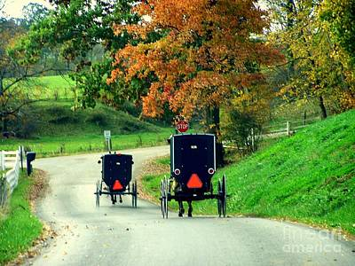 Amish Country In Autumn Ohio Holmes County Poster by Charlene Cox