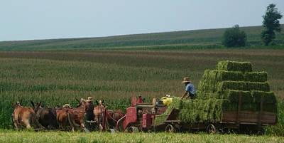 Amish Farm Poster by Lori Seaman