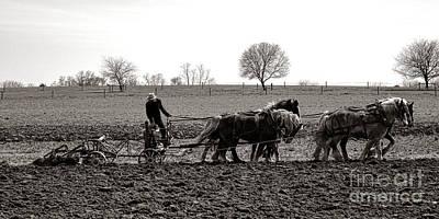 Amish Farming Poster