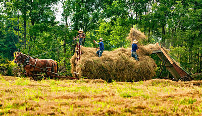 Amish Harvest 2 - Paint Poster by Steve Harrington