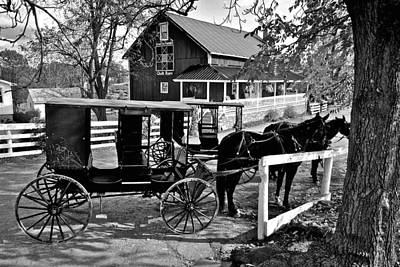 Amish Horse And Buggy In Black And White Poster