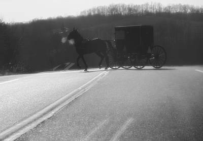 Amish Horse And Buggy In Winter Poster