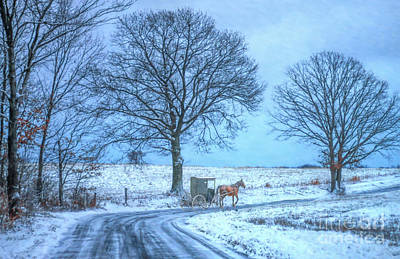 Amish Horse And Buggy Winter Ride Poster