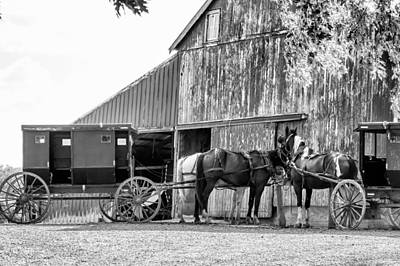 Amish Horse And Wagon Poster by Henry Fitzthum