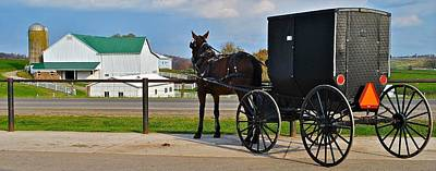 Amish Horse Buggy And Farm Poster