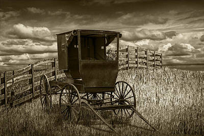 Amish Horse Buggy In Sepia Tone Poster by Randall Nyhof